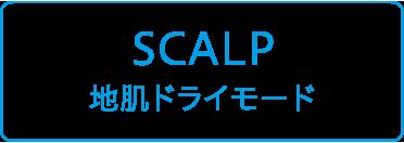 SCALP-地肌ドライモード